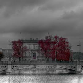 Autumn by Marcel Brussel - City,  Street & Park  Vistas