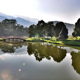 The Lake Garden of Taiping. by Robert Rizal Abdullah - Landscapes Prairies, Meadows & Fields