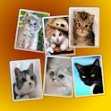 Cat Widget icon