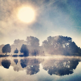 surreal sunrise by Brittany Todd - Instagram & Mobile iPhone ( reflection, instagram, park, tree, fog, ottawa, sunrise, pond )