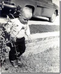 Gerardo May 64