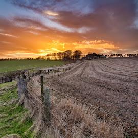 Stonehaven (by Martin Ziaja) by Martin Ziaja - Landscapes Prairies, Meadows & Fields ( colour, scotland, north sea, aberdeenshire, barren field, sunset, martin ziaja, stonehaven )
