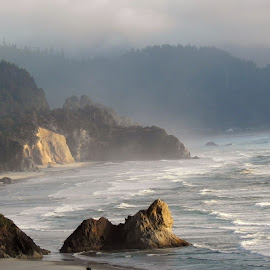 oregon coastline by Ilona Williams - Novices Only Landscapes