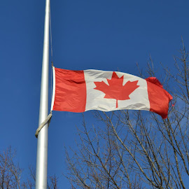 Proud to be Canadian  by Dawn Marie - City,  Street & Park  City Parks ( #hero #canada #proud #ripnathan #unitedwestand )