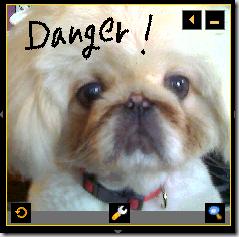 DogSample