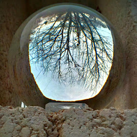 Glass in the Rough by Cecilia Sterling - Artistic Objects Glass ( winter, tree, meditation ball, cinder block, ledge )