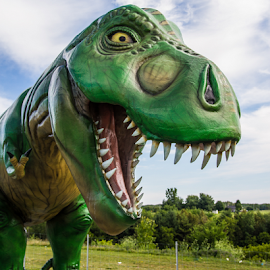 T-Rex by Thierry Madère - City,  Street & Park  Amusement Parks