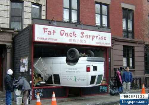 Car Surprise