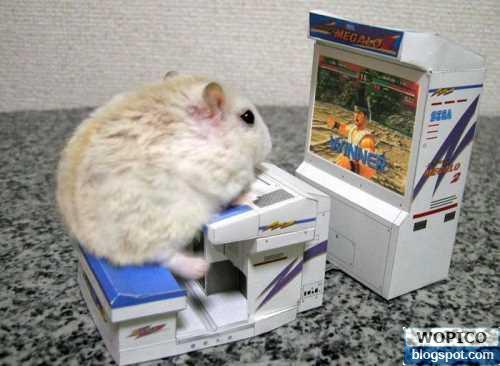 Hamster Games