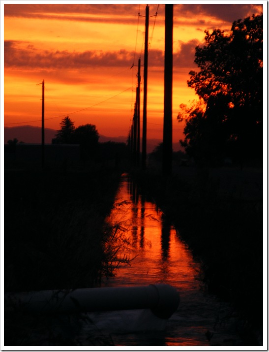Irrigation Ditch 1