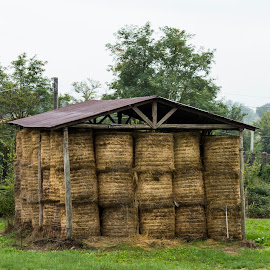 The Hay Shed by John Cope - Landscapes Prairies, Meadows & Fields ( relais villa d'assio, shed, bales of hay, hay )