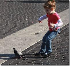 chasingpigeons