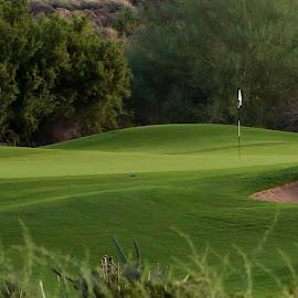 by Laura Johnston - Sports & Fitness Golf ( arizona )
