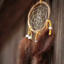 Keep Calm and Dream On by Molly Chalfin - Artistic Objects Other Objects ( dream catcher )