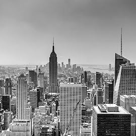 Manhattan by Jim Cunningham - City,  Street & Park  Skylines ( skyline, sky, empire state building, manhattan, new york city, new york, nyc )
