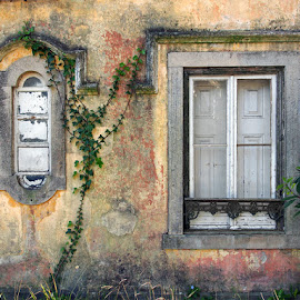 Old Windows by Khaled Ibrahim - Buildings & Architecture Other Exteriors