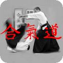 Aikido Kyu Review icon