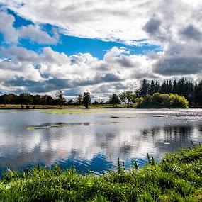 Pitfour lake by Derek Robinson - Landscapes Waterscapes (  )