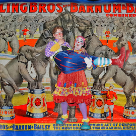 Clowns Against Circus Banner Background by Stephen Beatty - News & Events Entertainment