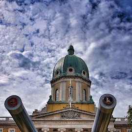 the canons  by Jose Figueiredo - Buildings & Architecture Public & Historical ( london, museum, war,  )