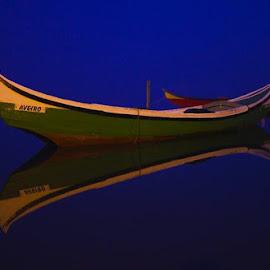 Ria Aveiro by Luis Cavaleiro - Landscapes Prairies, Meadows & Fields ( boat )