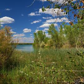 by Art Brokop - Landscapes Deserts ( blue skies, spring, high desert pond,  )