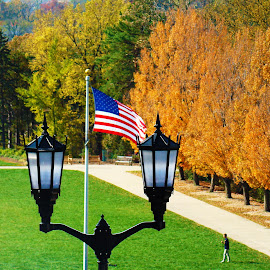usa by Des Allen - Novices Only Objects & Still Life ( flag, unique, park, fall, usa )