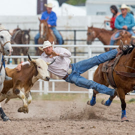 Long Reach by Ty Stockton - Sports & Fitness Rodeo/Bull Riding ( cowboy, steer wrestling, rodeo, cheyenne frontier days, bulldogging )