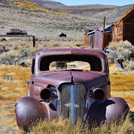 by Terry Gower - Transportation Automobiles