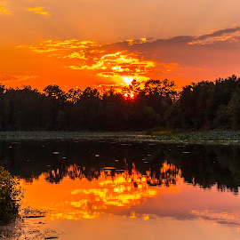 Sunset Beauty by Jeff Lebovitz - Landscapes Waterscapes ( water, orange, reflections, trees, lake )