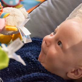 L'éveil by Robert Namer - Babies & Children Child Portraits ( baby portrait, natural light, babies, blond, portraits, newborns, natural, baby boy )