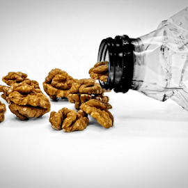 Brain Storm!! by Riad Zbeida - Artistic Objects Industrial Objects ( plastic, nuts, bottle, brain, spot, selective color, pwc )