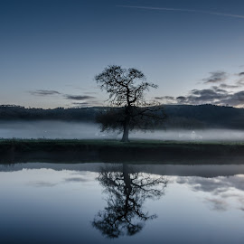 A mystree ;) by Grant Hyatt - Landscapes Waterscapes ( winter, lone tree, cold, tree, wales, reflections, weather, mist )