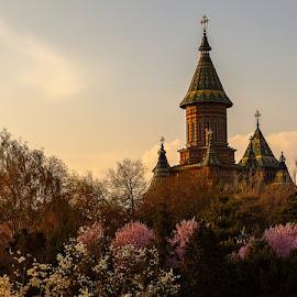 Mitropolitan Cathedral - Timisoara by Viorel Stanciu - Buildings & Architecture Places of Worship ( place of worship, cathedral, city park, parc, spring )