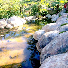 BOTANICAL GARDEN in Baguio City. by Angelica Purisima - Landscapes Caves & Formations