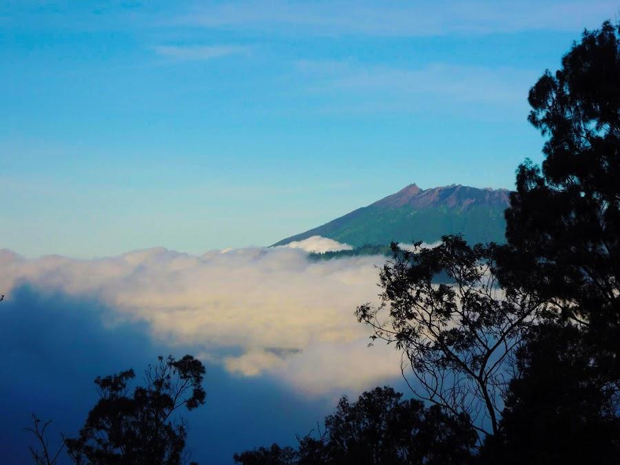 Volcano by Bogdan Penkovsky - Landscapes Travel ( adventure, volcano, simplicity, loneliness, morning )