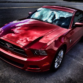 Mustang GT by Todd Bellamy - Transportation Automobiles
