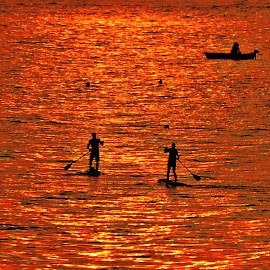 on the sea in sunset by Adriana Kastelan - Transportation Other