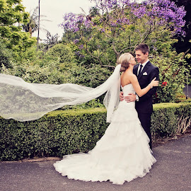 Lovers in the wind by Alan Evans - Wedding Bride & Groom ( love, wedding photography, purple flowers, wedding day, wedding, wedding veil, aj photography, couple, bride and groom, veil, garden, botanical gardens )