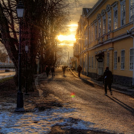 Into the sun by Bojan Bilas - City,  Street & Park  Street Scenes