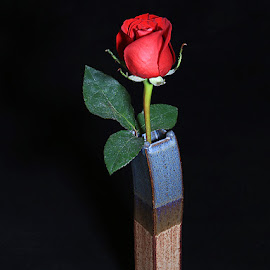 A Single Red Rose by Ken Miller - Artistic Objects Still Life ( vase, rose, art, pottery, flower,  )