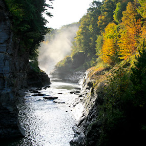 Letchworth State Park II by Peter Andrusyszyn - Landscapes Waterscapes ( letchworth, photo by pete andrusyszyn, state park, new york )