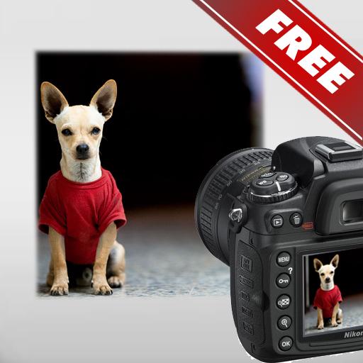 DSLR 相机 - 照片指南免费 程式庫與試用程式 App LOGO-硬是要APP
