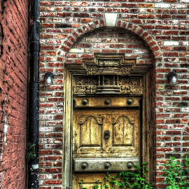 Use the other entrance by Tony Quinn - City,  Street & Park  Neighborhoods ( urban, old door, louisville, greenry, door, weeds, kentucky, abandoned )
