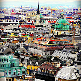 Viennese Roofscape by Tamsin Carlisle - City,  Street & Park  Vistas ( vienna, red, church, green, roofs, buildings, cityscape, yellow, domes, austria, city, rooftops,  )