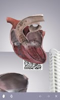 Screenshot of Cardiology 3D small animals(1)