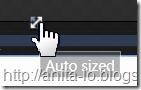 Auto sized