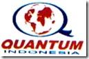 Logo QI1