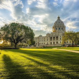 Summer Shadows by Mark Goodman - City,  Street & Park  City Parks ( minnesota, st paul photography, tree, sunset, saint paul, shadows, minnesota state capitol )
