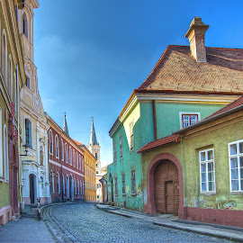 Pastels in Esztergom by Peter Kennett - City,  Street & Park  Neighborhoods ( hungary, pastels, houses, esztergom, street )